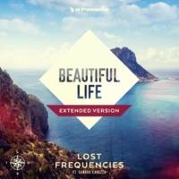 Lost Frequencies feat. Sandro Cavazza Beautiful Life(Henri PFR Remix)