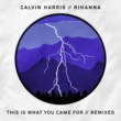 Calvin Harris ディス・イズ・ホワット・ユー・ケイム・フォー feat. リアーナ (Remixes)