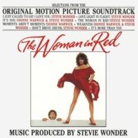 スティーヴィー・ワンダー The Woman In Red [Original Motion Picture Soundtrack]