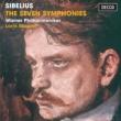ウィーン・フィルハーモニー管弦楽団/ロリン・マゼール Sibelius: Symphony No.1 in E minor, Op.39 - 2. Andante (ma non troppo lento)