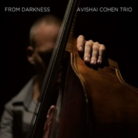 Avishai Cohen Trio From Darkness