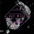 TM NETWORK Get Wild 2015