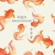 STALAG 涼やかで神秘的な水琴窟の癒し ~ Aqua Meditation(アクアメディテーション)