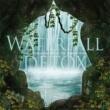 VAGALLY VAKANS #7つの聖域の滝 #霊気 #創造力 #浄化作用 #安眠効果 ~ WATERFALL DETOX(ウォーターフォールデトックス)