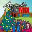 Various Aguinaldo Tropical Mix (Medley) Saludos Saludos/ De Las Montañas/ El Na/ Abreme La Puerta/ Si No Me Dan De Beber/ Si No Me Dan Pasteles/ Hermoso Bouquet/ Parranda Del Supon/ Candela