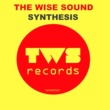The Wise Sound Synthesis