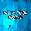Karaoke Hits Band No Te Vayas