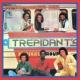 Trepidant's Remember Me