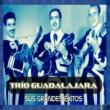 Trío Guadalajara Vagabundo