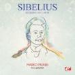 RSO Ljubljana&Marko Munih Kuolema, No. 1, Op. 44: I. Valse triste