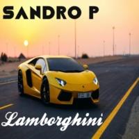 Sandro P Lamborghini