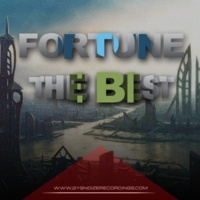 Fortune Fortune - The Best