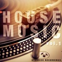 Thesunbeam & Funky SCORPION & Nicky Smiles & Paul Smith & Dj IGorFrost & SERHIO & TIME FOR ATTACK & Amade Landan & Harmonique & Victoria Ray & Danis Rise & Basspowers & Double Nine House Music - Vol.1