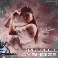 GYSNOIZE Project