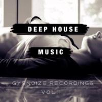 Dj IGorFrost & Max Riddle & Alex Nikitin & S.Poliugaev & Beat Ballistick & Beatoz & DIMTA & Stereo Saw & Miroslav Wilde & Dj Stile & ELSAW & VEKTOR Deep House Music - Vol.1