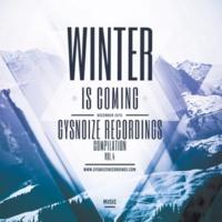 SamNSK & Alex Skywalker & Harmonique & Victoria Ray & Proezas & Dmitry Bereza & PULSE & Dj Amas & Konstantin Fazlov & Serg Grinov & Telyo & Aquila'z & Invert Winter Is Coming, Vol.4