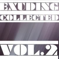 Stereo Sport & Alex Bent & J. Night & N. Wade & Laenas Prince & Fcode & Likhnitskiy & Chirum-A Exuding Collected, Vol. 2