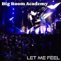 Big Room Academy Let Me Feel