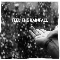Natural Rain Sounds Feel the Rainfall