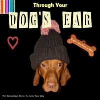Pet Lovers Through Your Dog's Ear