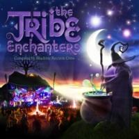 Nukleall & Tuk & Earthspace & Purple Raver & Endeavour & Audioform & Hypnoise & Contineum & Braincell & K.I.M. & Mechanimal & Solid State Project The Tribe Enchanters