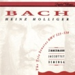 ハインツ・ホリガー/タベア・ツィンマーマン/クリスティアーヌ・ジャコテ/トマス・デメンガ ソナタ 第1番 変ホ長調 BWV525: 第1楽章:(Allegro moderato)