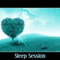 Peaceful Sleep Music Collection Sleep Session ‐ Essential Sleep Music, Deep Sleep, Pure Relaxation, Sleep Therapy