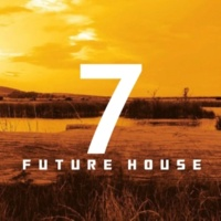Various artists & Royal Music Paris & Philippe Vesic & Big & Fat & Dino Sor & Nightloverz & The Rubber Boys & MCJCK S7VEN FUTURE HOUSE