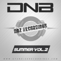 Rautu & RAV & GYSNOIZE & Dist HarD & SJ Ocean & Kantrabass & Drimuzz & DUVRTE & Makeyna DNB Summer Vol.2