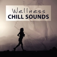 Spa Chillout Music Collection Wellness Chill Sounds ‐ Healing Music for Spa and Wellness, Chill Out Background Sounds