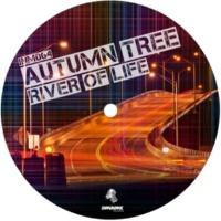 Autumn Tree River Of Life