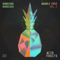 Dubdisko & Duodisco Double Face Vol. 2