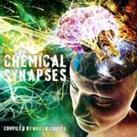 Various & Brainbokka Chemical Synapses