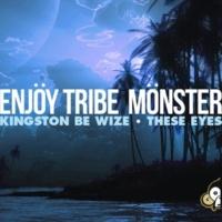 Enjoy Tribe Monster Kingston Be Wize