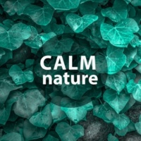 Relaxing Evening Music Universe Calm Nature ‐ Nature Music to Help You Relax, Soft Sounds, New Age Relaxation, Water Sounds