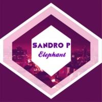 Sandro P Elephant