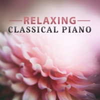 Classical Ambient Relax Collective Relaxing Classical Piano ‐ Classical Instruments with Mozart, Bach, Classical Music for Soul, Rest After Work,