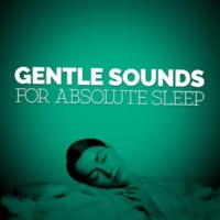 Music For Absolute Sleep Gentle Sounds for Absolute Sleep