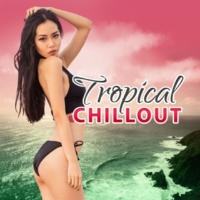 Beach Party Ibiza Music Specialists Tropical Chillout - Ambient Paradise Music, Balearic Lounge, Sunset Chill Out