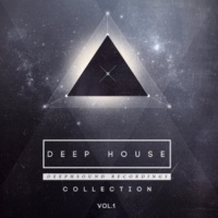 Ruslan Stiff & Sweet Peppers & TIME FOR ATTACK & Max Riddle & ARMID & S.Poliugaev & Miroslav Wilde & Ruby Ray Deep House Collection, Vol.1