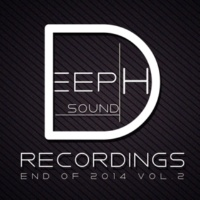 Hitman & Rain Freeze & Beat Ballistick & DIMTA & Stereo Saw & Miroslav Wilde & Alex Panchenco & JohnnyKoks & MaxStar & Briefjecks & LastEDEN & liquid minimal DeepHSound Recordings - End Of 2014 Vol.2