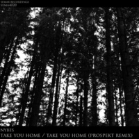 Prospekt & Nybes Take You Home / Take You Home (Prospekt Remix)