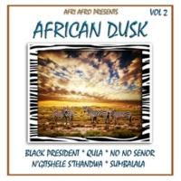Afri Afro African Dusk, Vol. 2