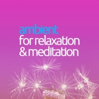 Meditation Relaxation Club Ambient for Meditation & Relaxation