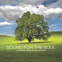 Yuri Sazonoff Sound for the Soul: Classical Music for Relaxation