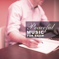 Studying Music Group, ExamStudy Music Collective Peaceful Music for Exam ‐ Music Teaching, Classical Music for Study, Concentration Songs, Mozart, Bach
