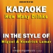 Metro Karaoke Singles How Many Drinks? (In the Style of Miguel & Kendrick Lamar) [Karaoke Version]