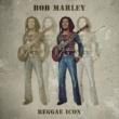 Bob Marley Reggae Icon