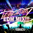 V.A. LEGENDARY EDM MIX!! mixed by HOLLIUCHI