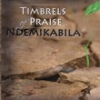 Timbrels Of Praise Use Me Lord